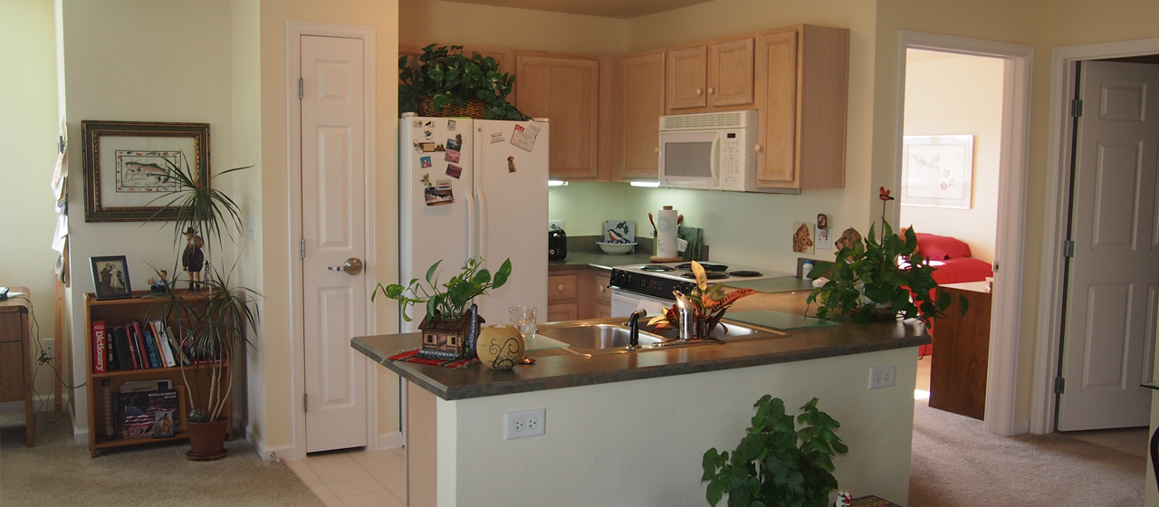 apt kitchen interior